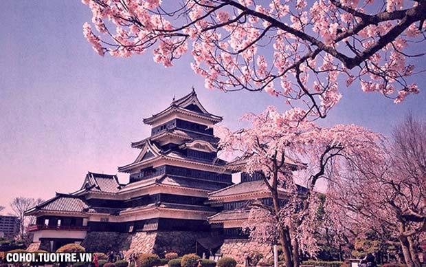 Hiến pháp 17 điều của Nhật Bản