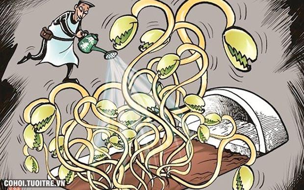 Bảo vệ lá gan an toàn trước thực phẩm bẩn