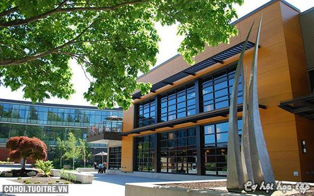 Du học Mỹ tiết kiệm, chất lượng với CĐ Cộng đồng Everett