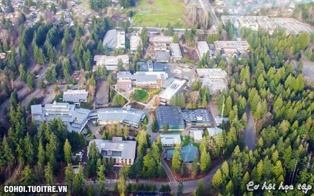Ưu đãi cực khủng từ trường Green River College Bang Washington