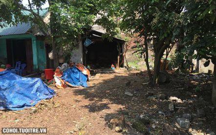 Bán gấp nhà đất ở tỉnh Quảng Ninh