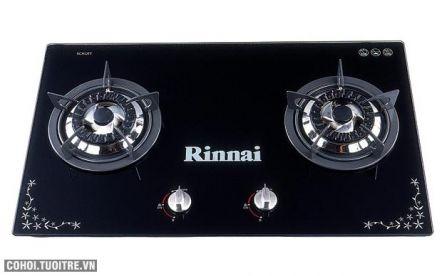 Bếp gas âm Rinnai RVB-2G(Schott-B)