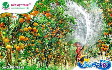 Tour Tiền Giang, Bến Tre, Cần Thơ 2N1Đ, KS 3 sao