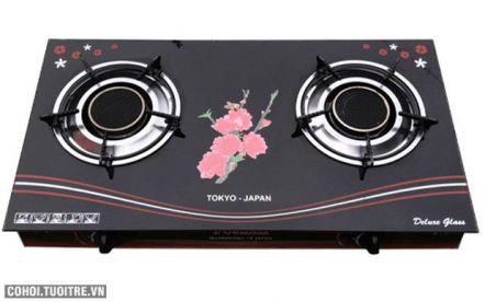 Bếp gas hồng ngoại Fujishi FM-H08