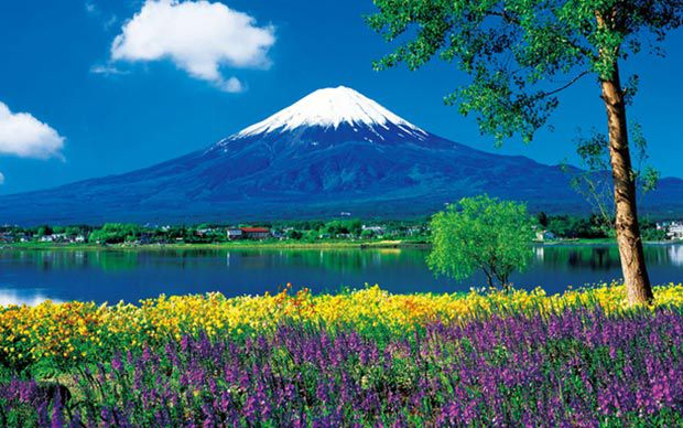 Ưu đãi 3 triệu đồng tour du lịch Nhật Bản mùa hè
