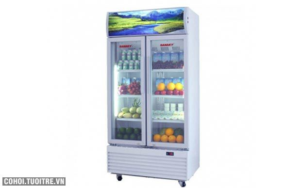 Tủ mát siêu thị Sanaky VH-809HP