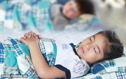 Túi ngủ trưa tiểu học cao cấp Edena