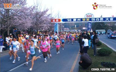Giải Marathon Hoa Anh Đào Gyeongju 2016