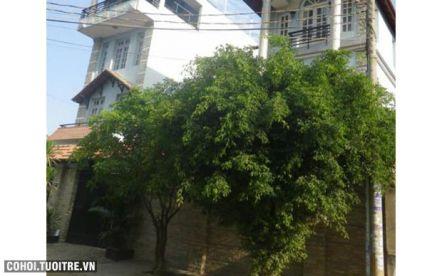 Nhà phố phường Thảo Điền quận 2
