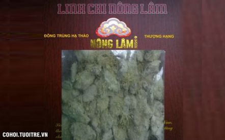 Đông Trùng Hạ Thảo Nông Lâm - Đại học Nông Lâm TP.HCM