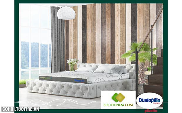 Nệm cao su Dunlopillo - Latex World