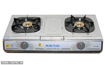 Bếp gas Bluestar NS-290F/S