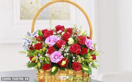 Vẫn hát lời tình yêu - Mẫu hoa HGI-407