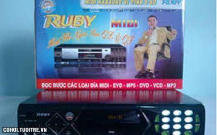 Đầu Midi Karaoke Ruby MD 450