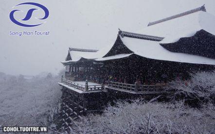 Ngắm tuyết đầu năm và khám phá lịch sử Nhật Bản