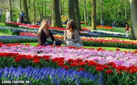 Tour Thụy Sĩ, Đức, Hà Lan (lễ hội hoa Keukonhof 2016)