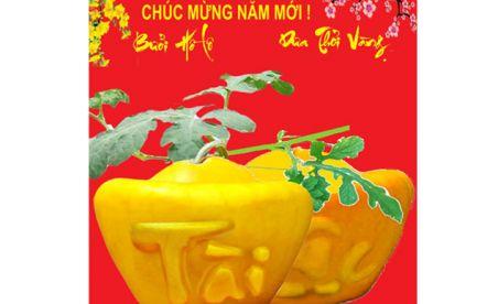 Độc đáo với dưa hấu thỏi vàng chữ Việt