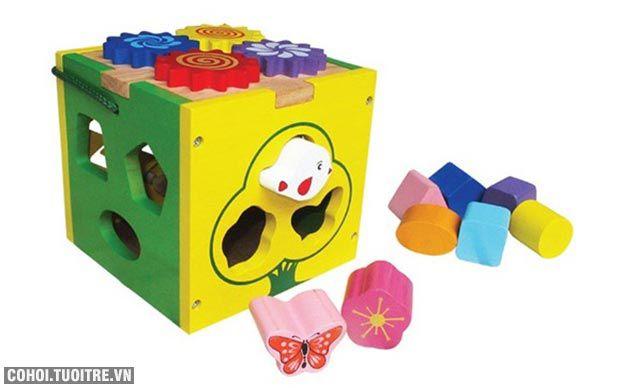 Trò chơi Hộp thả khối đa năng bằng gỗ Winwintoys 67022