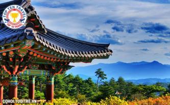 Tour Hàn Quốc - Seoul - Nami - Everland