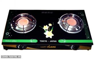 Bếp gas hồng ngoại cao cấp Happy Flame HP-7790HN