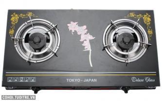 Bếp gas mặt kính Fujishi FR - N77