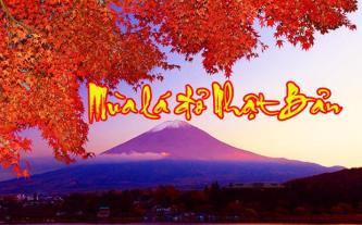 Tour du lịch Nhật Bản - Thu về trên xứ Phù Tang