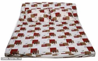 Bộ drap cotton cao cấp Thắng Lợi