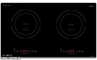 Bếp điện từ đôi Eurosun EU-T256