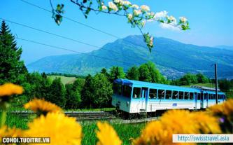 Tour 9N tham quan Thụy Sĩ, Áo, Cộng hòa Séc
