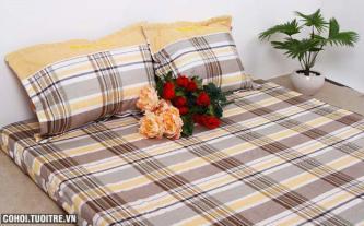 Bộ Drap vải cotton Thanh Thủy - Nhẹ nhàng nâng niu giấc ngủ