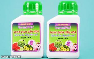 Combo 2 chai dung dịch cắm hoa Vermaplex nhập khẩu Mỹ