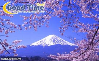 Tour du lịch Nhật Bản 6N6Đ