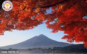 Tour du lịch Nhật Bản - thưởng ngoạn mùa lá đỏ