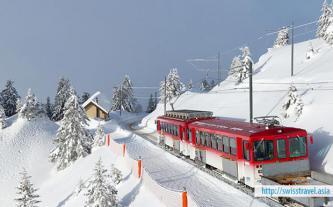 Tour Thụy Sĩ - Đức - Hà Lan Tết Nguyên đán 2019