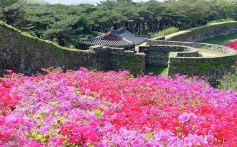 Hàn Quốc đảo Jeju miễn visa 4N3Đ