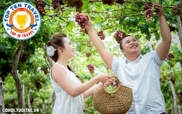 Tour Nha Trang giá hấp dẫn dịp Tết Đinh Dậu