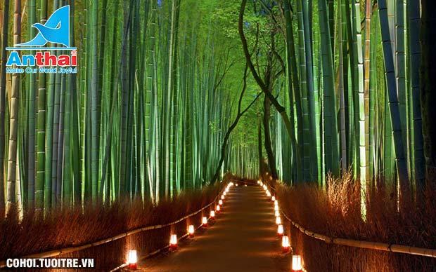 Khám phá cung đường vàng Tokyo - Osaka 6N5Đ