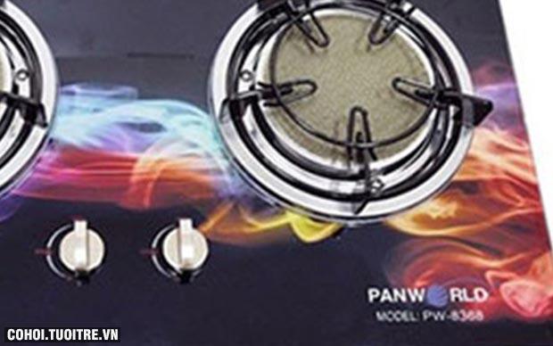 Bếp gas âm hồng ngoại Panworld PW 8368 FC