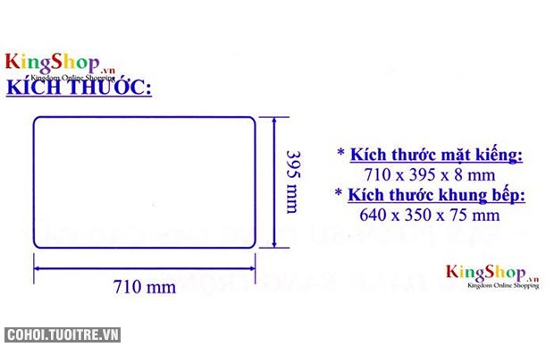 Bếp gas âm hồng ngoại Bluestar NG-6730IC đánh lửa IC