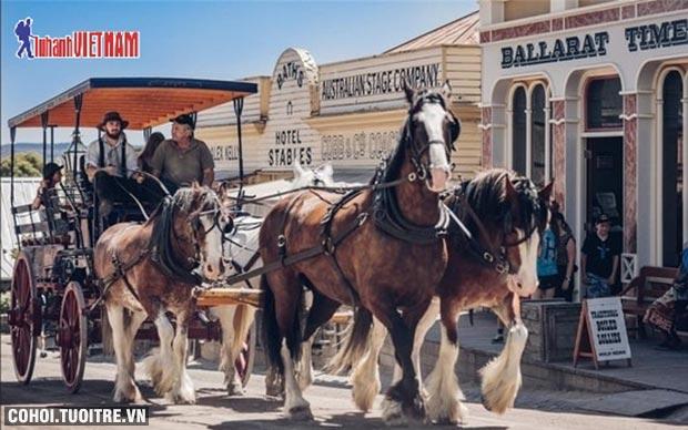 Tour du lịch Úc giá khuyến mãi từ 36,9 triệu đồng