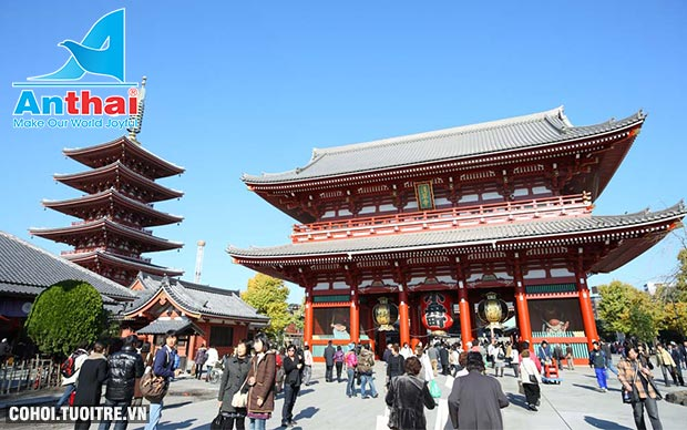 Khám phá Nhật Bản mùa lá đỏ 6N5Đ