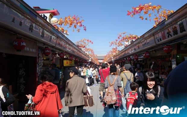 Du lịch Nhật Bản mùa thu lá đỏ chỉ 21,9 triệu