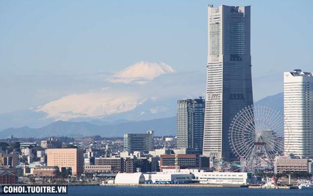 Tour Tokyo - Núi Phú Sĩ - Hakone - Yokohama (4N3Đ)
