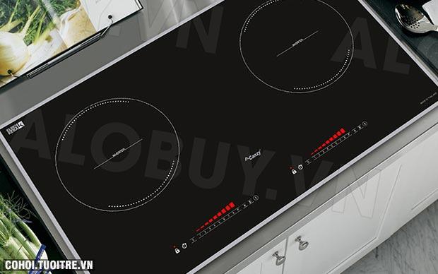Bếp từ 2 lò cảm ứng Canzy CZ-79D