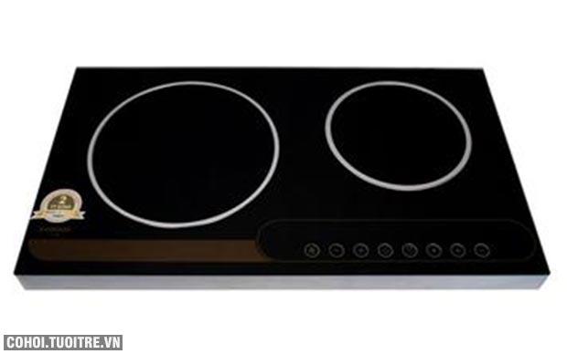 Bếp hồng ngoại đôi cảm ứng Sanko E-COOKER
