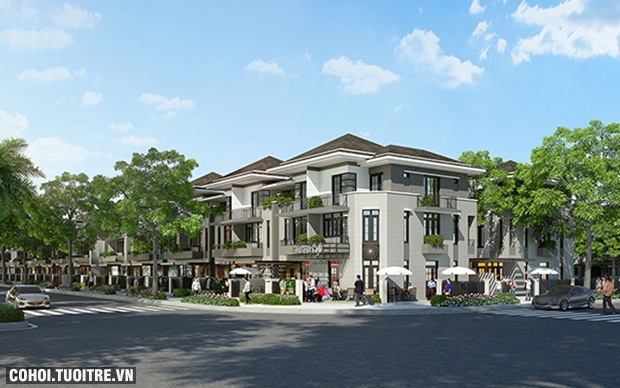 Biệt thự - nhà phố có mãi lực tốt trên thị trường