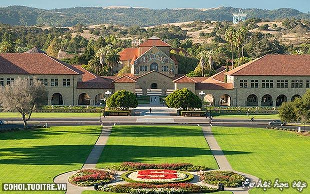 Từ Stanford - Harvard đến Việt Nam