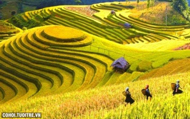 Mua tour tặng tour miễn phí tại Lữ Hành Việt