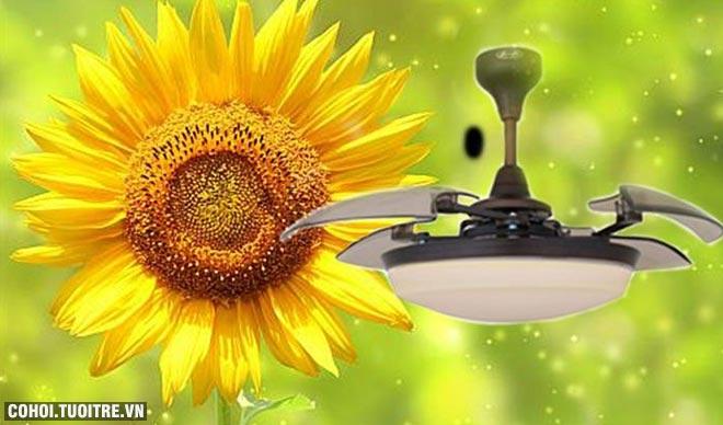 Xả kho quạt trần trang trí AlphaFan Sunflower chính hãng