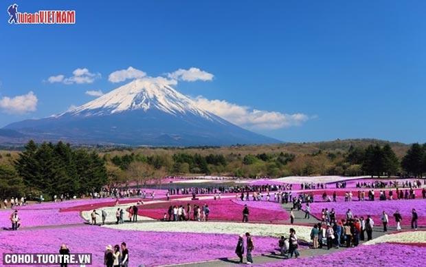 Khám phá Nhật Bản mùa hè, trọn gói từ 12,9 triệu đồng